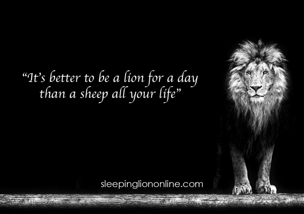 lion-quote